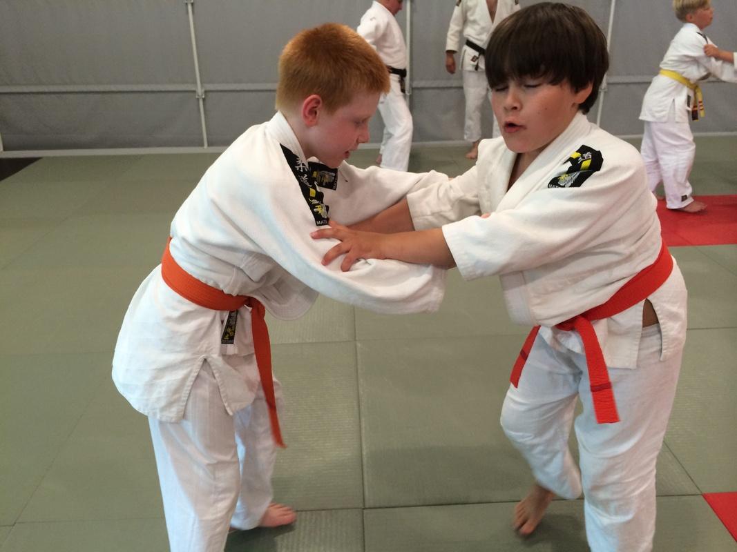 Lahden Judoseura